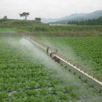 農薬は、人体や脳に影響する?⇒こんな害があるそうです
