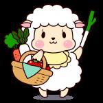 無農薬野菜はどこで安く買える?自家栽培とどっちが安い?