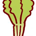 野菜がシナシナになるのを防ぐ方法、ピンッ!と復活させる方法