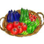 野菜はどこで買うのが一番安全で新鮮?⇒ずばりココです