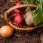 土つき野菜に残留農薬・食中毒の危険性?予防法は⇒